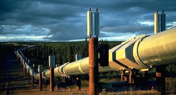 Kitoloncolták az alaszkai merénylőt