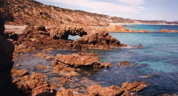 Ötszázmillió évesnél idősebb fosszíliák Ausztráliában