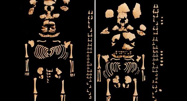 Prehistorikus ikerpár maradványait tárták fel