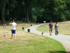 Sárguló fű, Prospect Park