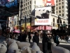 Juhok a Time Square-en
